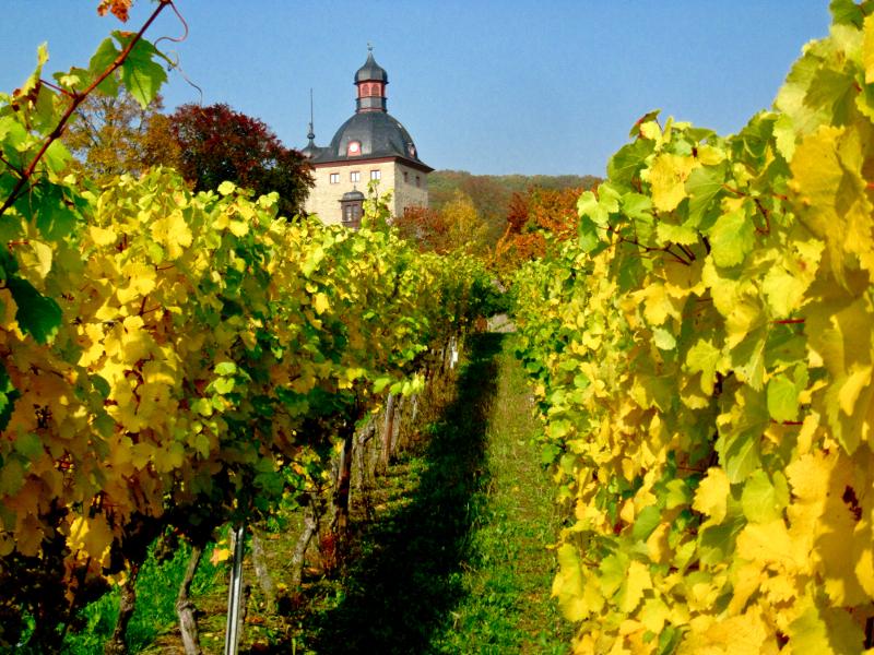 Schloss-Vollrads